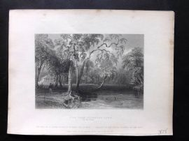 Bartlett America C1840 Print. View from Glenmary Lawn (On the Owago) USA